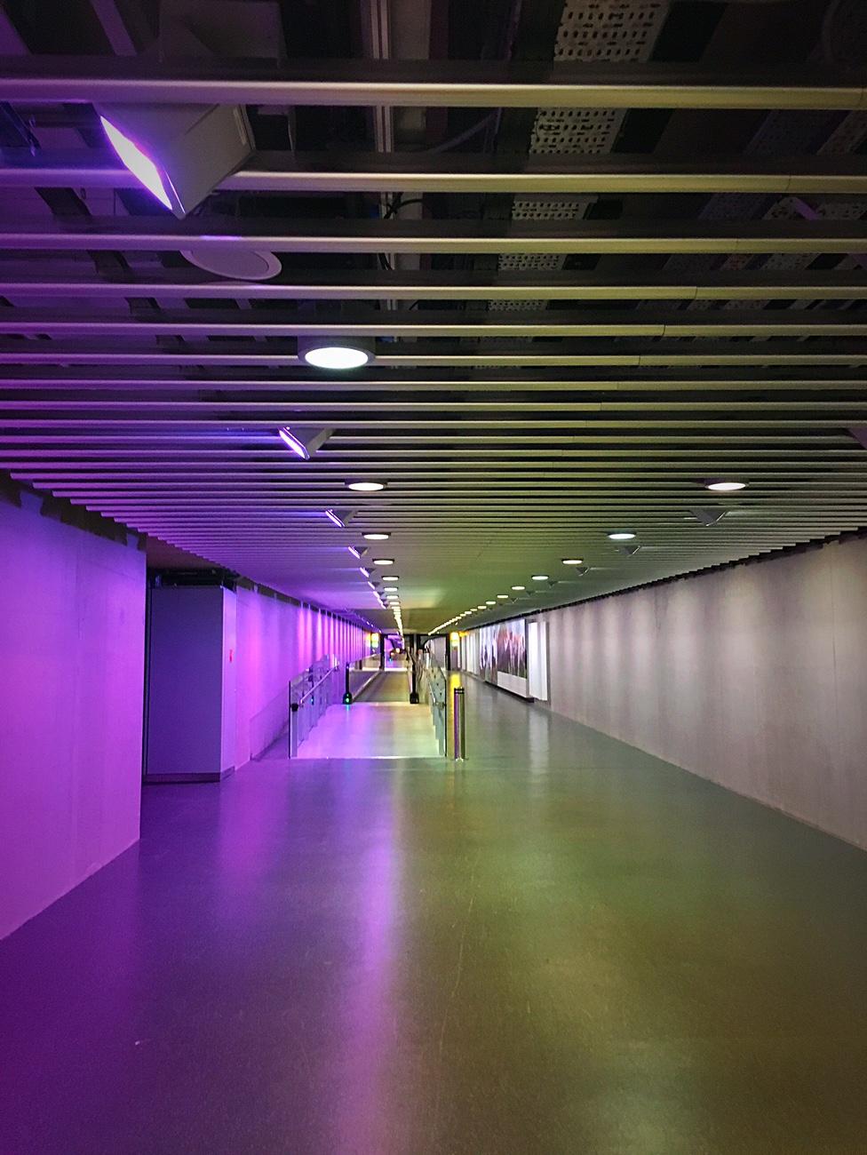 terminal-walk